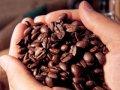В Житомире полицейские задержали вора-кофемана
